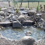 Rock Pond in Backyard